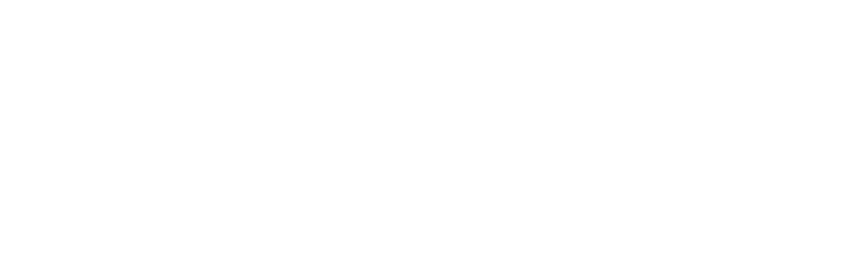 VK Logo transparent white